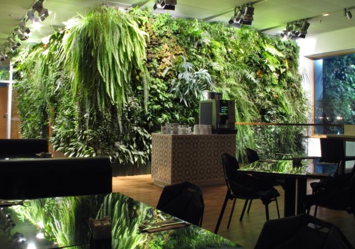 außergewöhnliche-Büropflanzen-an-der-ganzen-wand