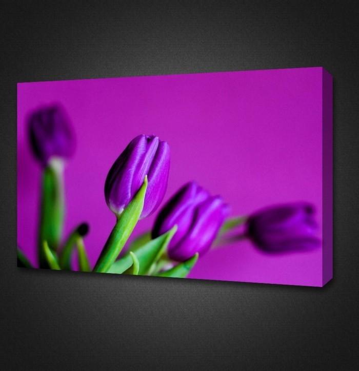 coole-Idee-für-Leinwandbild-lila-Tulpen