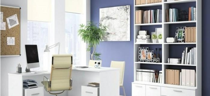 eine-Komposition-aus-Büropflazen-den-Arbeitsplatz-verschönend