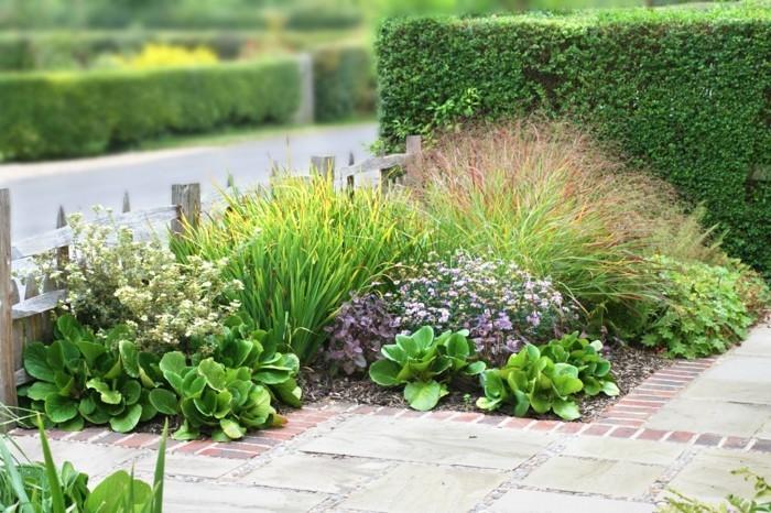 einmalige-gartenideen-sehr-schöne-pflanzen-in-grün-und-lila