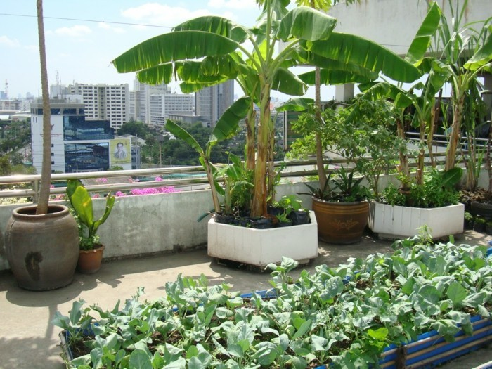 einmalige-interessante-gartenideen-für-kleine-gärten