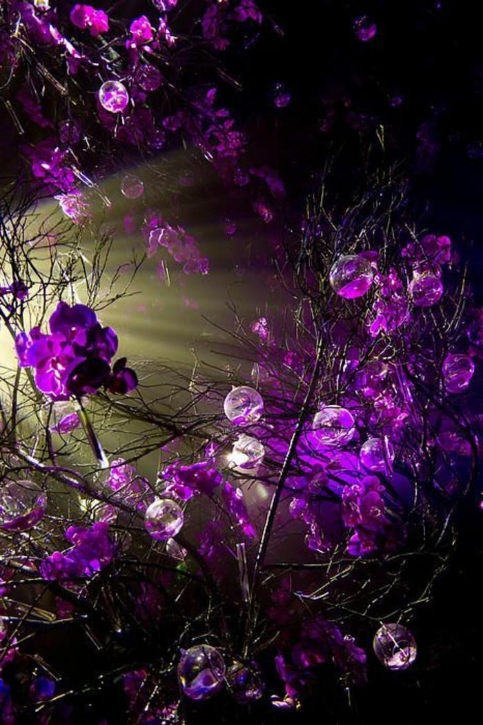 einzigartiges-Foto-von-lila-Blumen