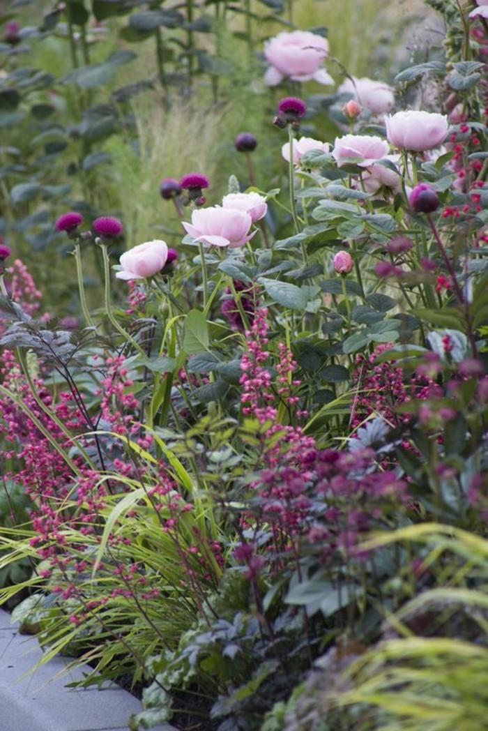 englischer-Garten-voll-mit-fantastischen-Frühlingsblumen