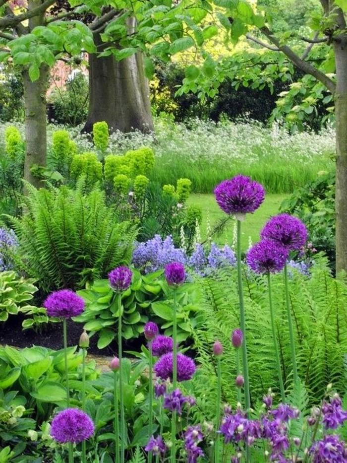 frischer-Garten-mit-interessanten-Blumen