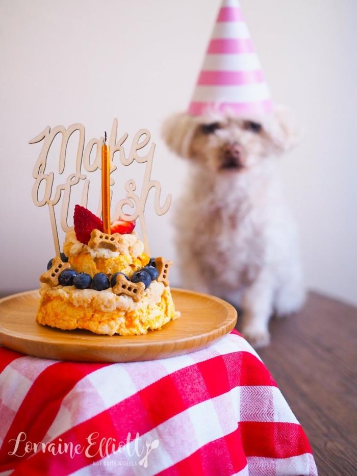 geburtstagskuchen rezepte kleiner hund mit partyhut geburtstag kleiner kuchen rot weiße tischdecke