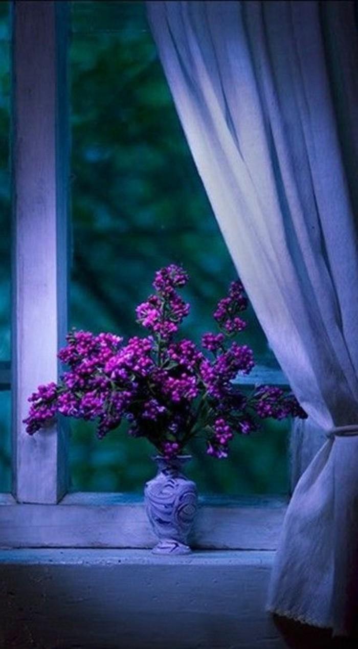 lila-Blume-Arrangierung-am-Fenster