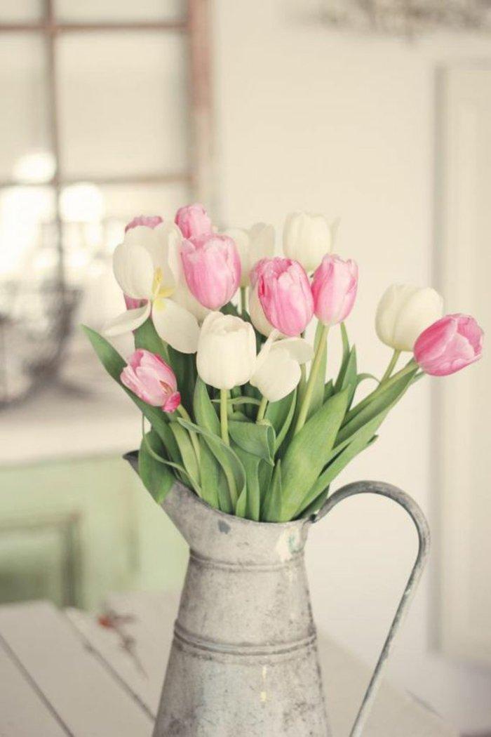 schöne-weiße-und-rosa-Tulpen