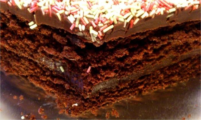 schnelle-torte-aus-Schokoladen-sehr-lecker
