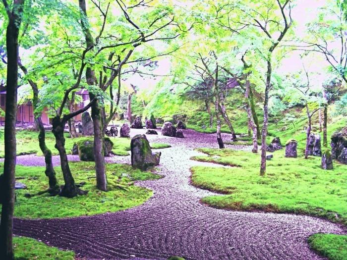 sehr-schönen-vorgarten-anlegen-viele-bäume-grünes-gars