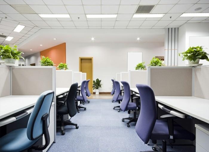 symmetrisch-gestellte-kleine-zimmerpflanzen-zu-jedem-arbeitsplatz