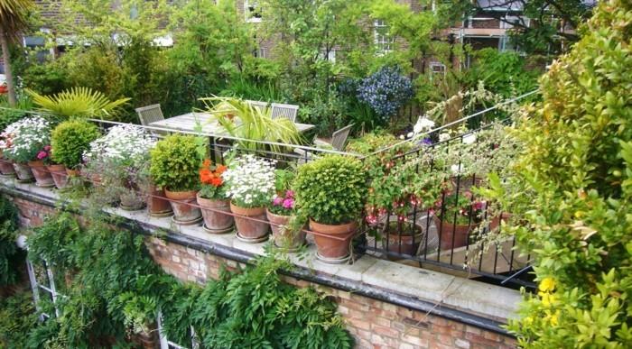 viele-schöne-grüne-pflanzen-gartenideen-für-kleine-gärten-effektvolles-design