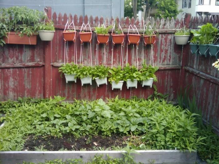 vorgarten-anlegen-interessanter-zaun-und-grüne-pflanzen