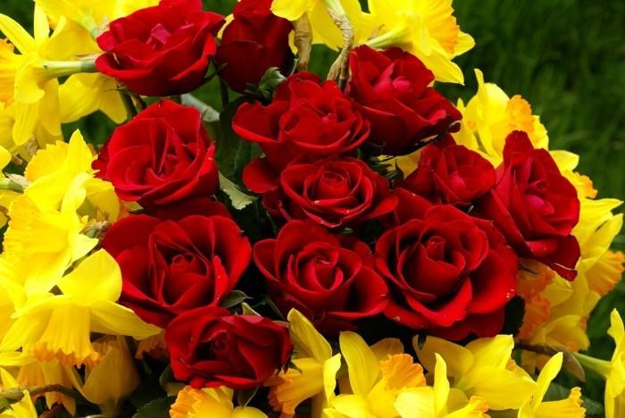 Blumensträuße-Bilder-Narzissen-und-Rosen
