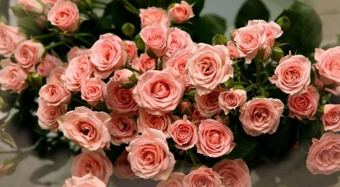 Blumensträuße-Bilder-mit-rosa-Rosen