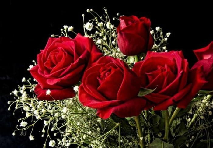 Blumensträuße-Bilder-rote-Rosen-mit-winzigen-weißeх-Blumen