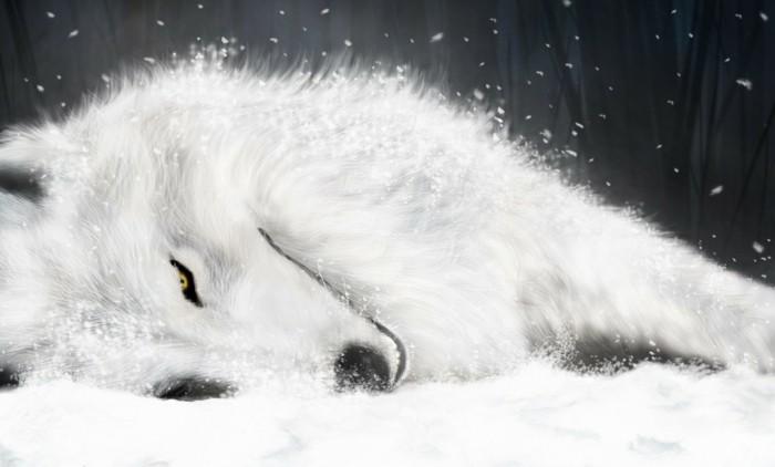 Coole-Anime-Bilder-ein-weißer-Wolf