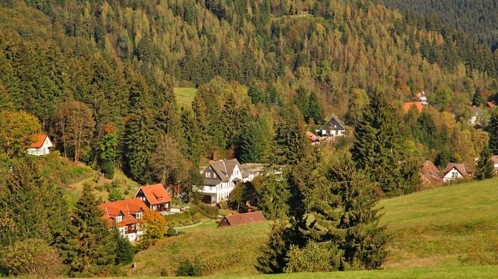 Ferien-im-Harz-ein-Dorf