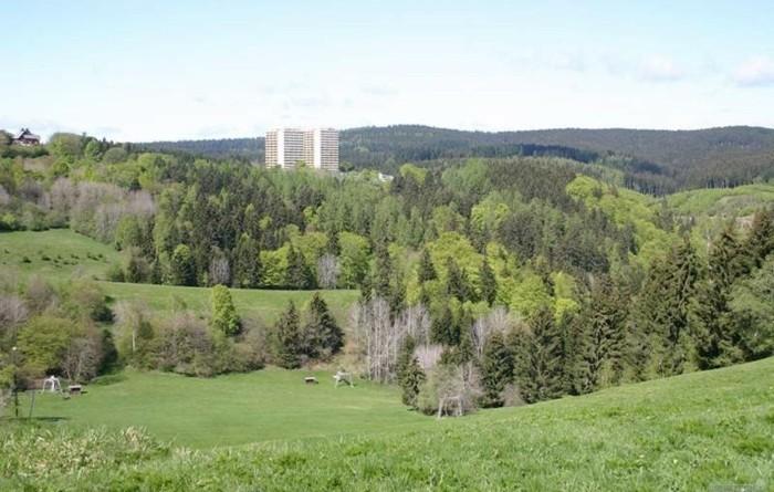 Ferien-im-Harz-schöne-Hügel
