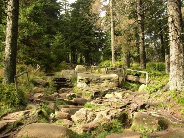 Ferien-im-Harz-sehr-wunderschön