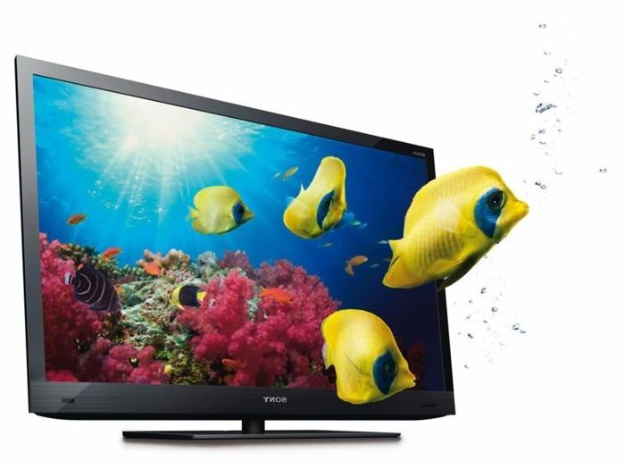 Großer-Fernseher-mit-gelben-Fischen