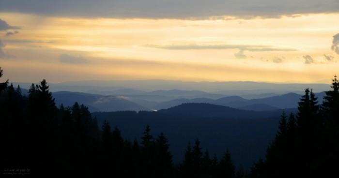 Kurzurlaub-im-Harz-bei-Sonnenuntergang