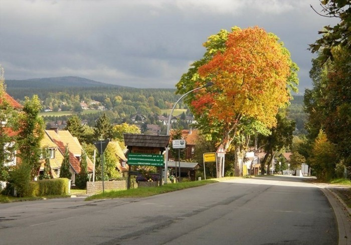 Kurzurlaub-im-Harz-im-Herbst