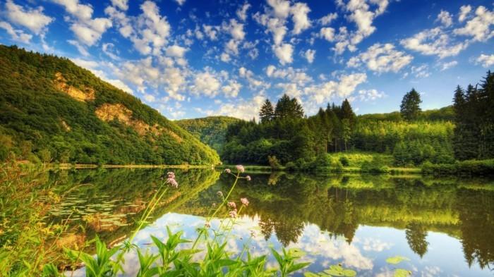 Landschaftsfotografie-sehr-grün-im-Frühling
