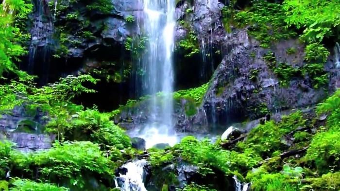 Poster-Wasserfall-passend-zu-Wohzimmer