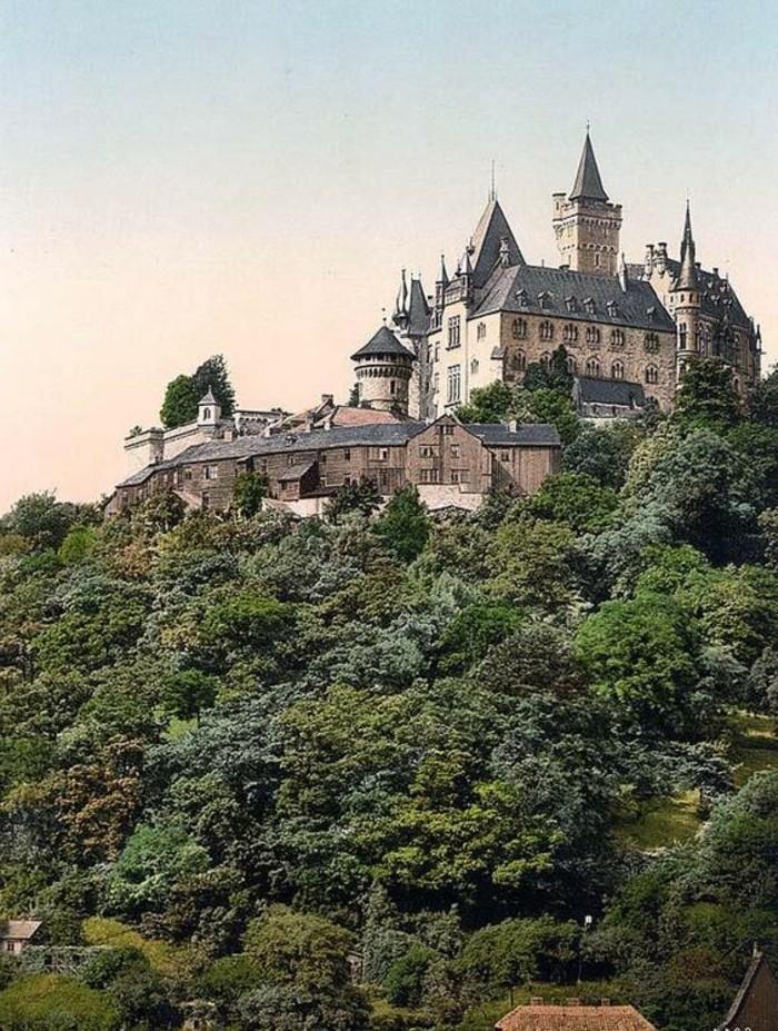 Urlaub-im-Harz-das-Schloss