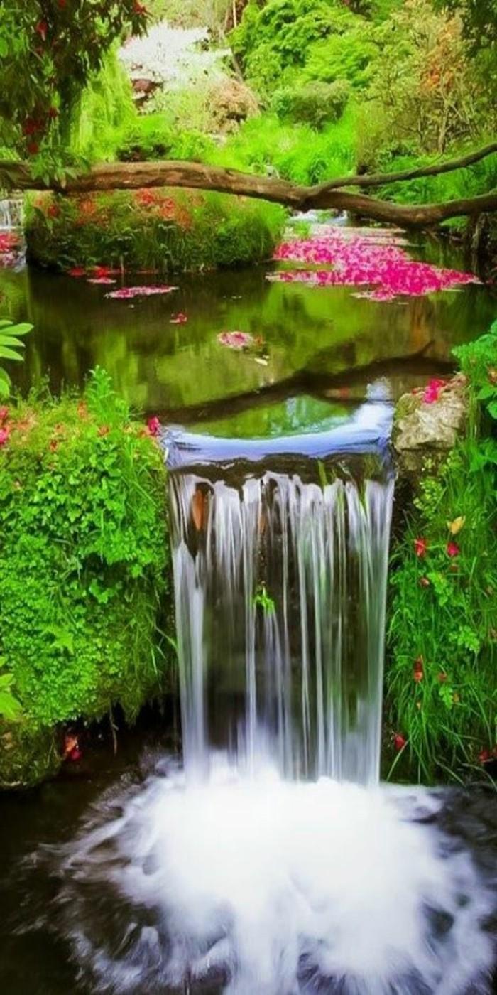 Wasserfall-Fotos-mit-Blühten-schwimmen