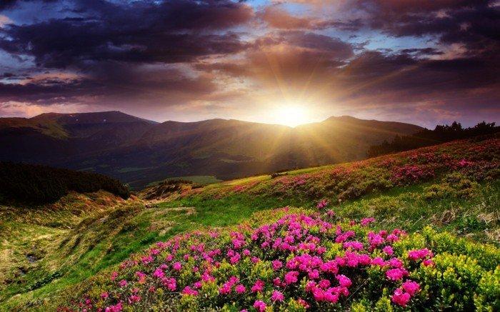fabelhafte-natur-fotos-mit sonnenaufgang-und-sonnenuntergang