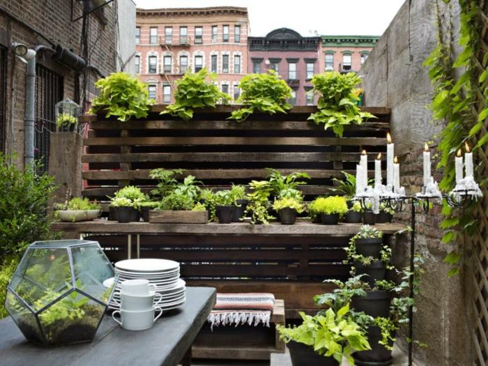 super-schöne-gartengestaltung-modernes-design-viele-grüne-pflanzen