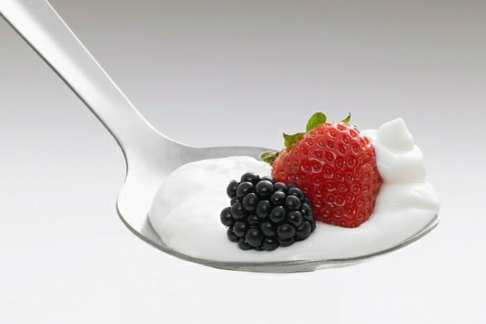 Bulgaria-Joghurt-mit-zwei-Zutaten