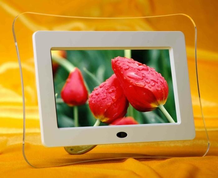 Digitaler-Bilderrahmen-die-Blumen-gut-zeigt
