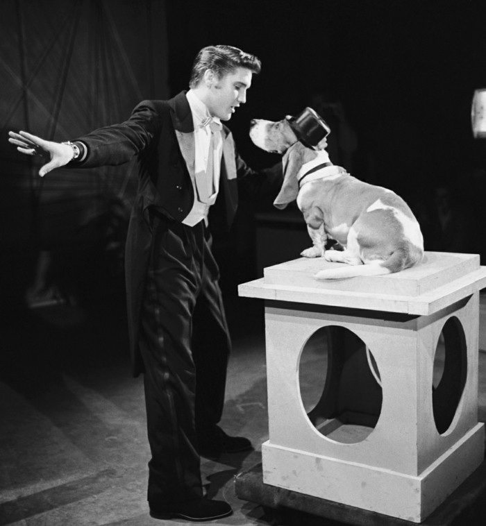 "THE STEVE ALLEN SHOW -- Aired July 1, 1956 -- Episode 2 -- Pictured: Elvis Presley sings ""Hound Dog"" (Photo by NBC/NBCU Photo Bank via Getty Images)"