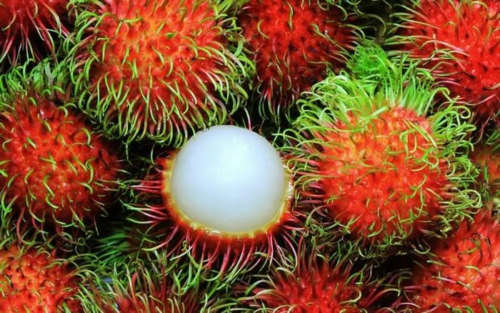 Exotische-Früchte-die-nirgend-zu-sehen-sind