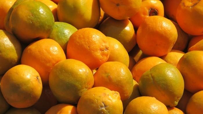 Exotisches-Obst-Orangen-aus-Indien