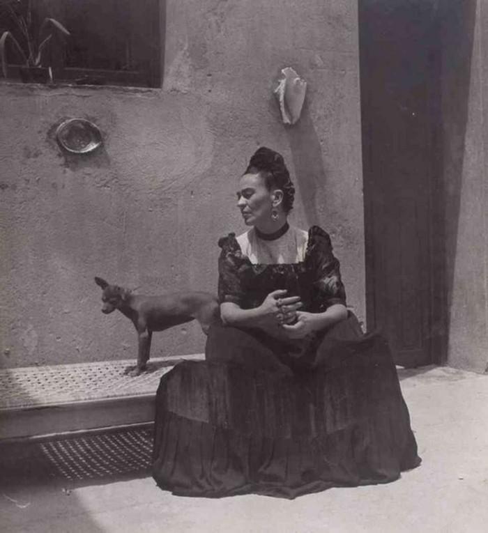 Frida-Khlo-exotische-Haustiere-Hund