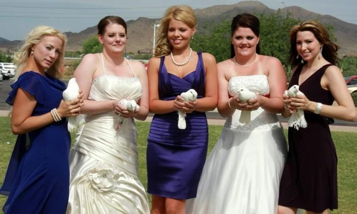 Hochzeitstauben-mit-den-Brautjungfer-fotografieren