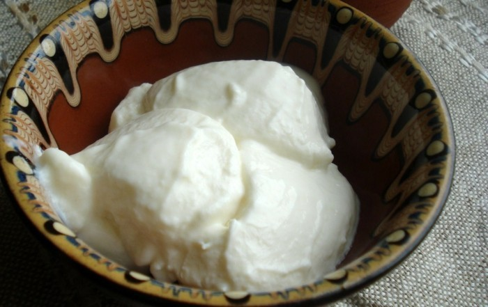 Joghurt-Bakterien-nennt-man-Lactobacillus-bulgaricus