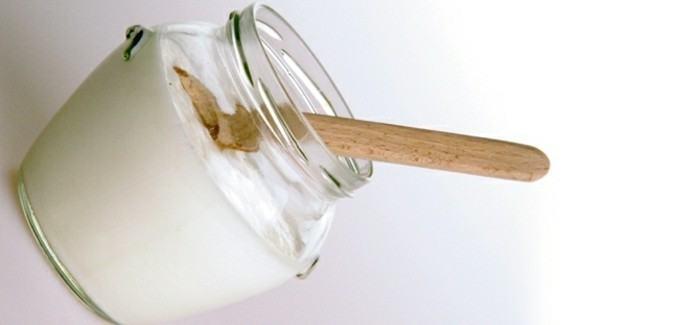 Joghurt-Bakterien-sind-eine-bulgarische-Entdeckung