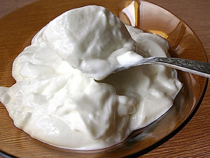 Joghurtkultur-man-nennt-sauere-Milch-in-Bulgarien