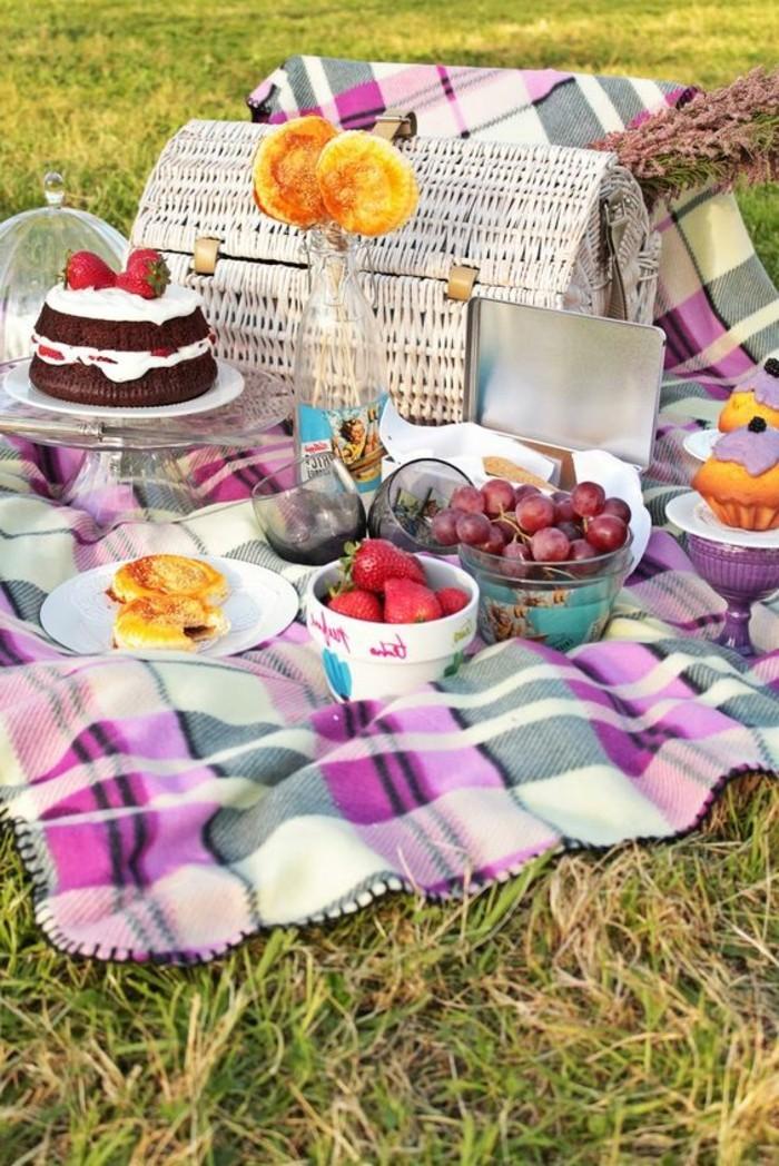 Picknick-im-Freien-mit-Leckereien