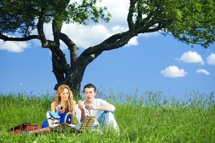 Picknick-im-Freien-unter-einem-Baum