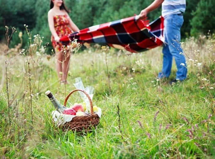 Picknick-im-Grünen-auf-karrierter-Decke