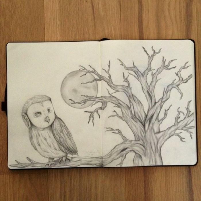 Schöne-Zeichnungen-Bleistift-eine-Eule