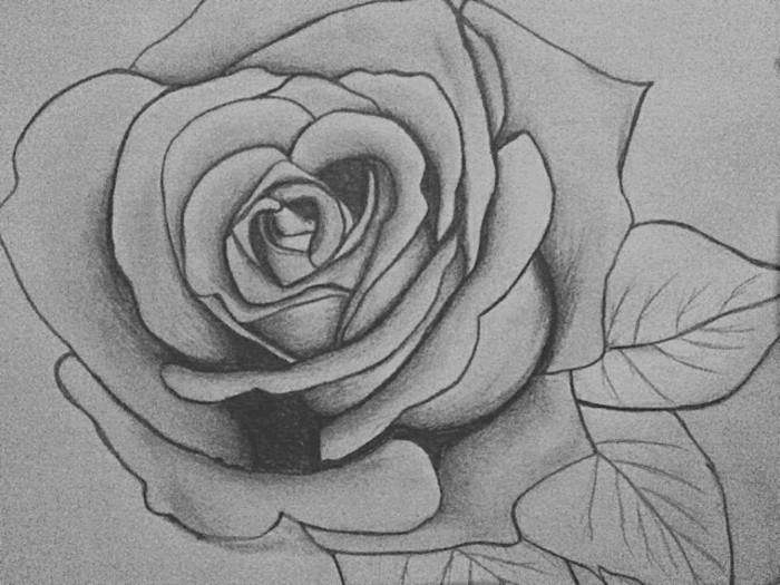 Schöne-Zeichnungen-Bleistift-eine-Rose