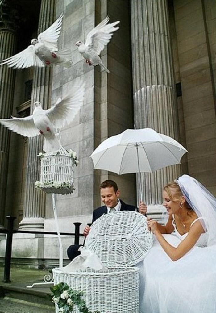 Tauben-Fliegen-lassen-mit-Sonnenschirm