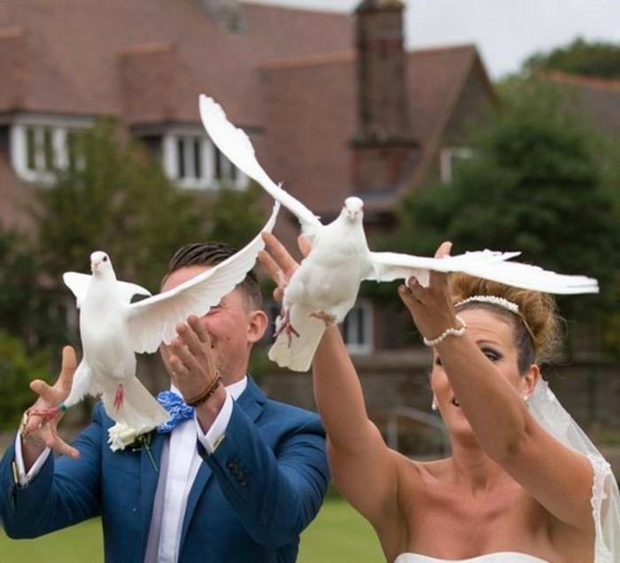 Tauben-für-Hochzeit-mit-Lächeln
