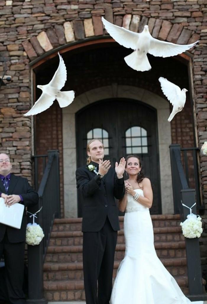 Tauben-fliegen-lassen-drei-in-verschiedenen-Richtungen